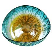 Marine Marigold Wall Plate (Set of 2)