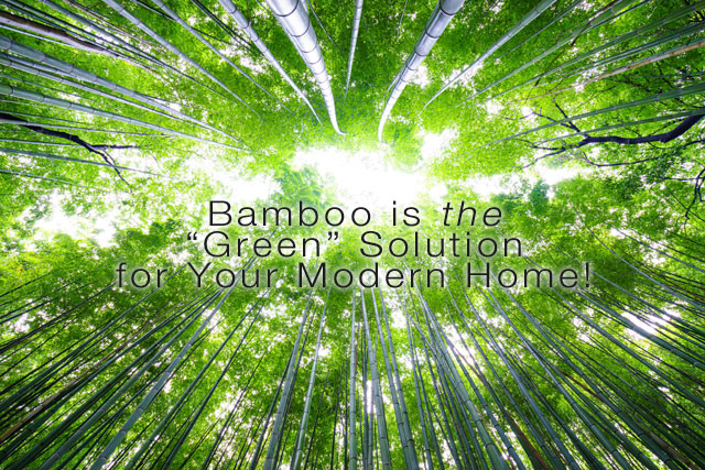 Bamboo is the Green Solution for a Modern Home
