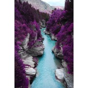 Purple Gorge