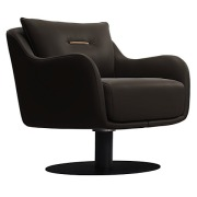 Platt Lounge Chair