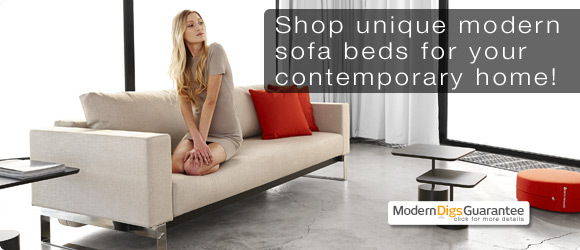 Modern Sofa Sleepers | Designer Sofa Bed | Modern Digs